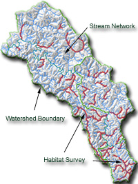 Mattole Watershed
